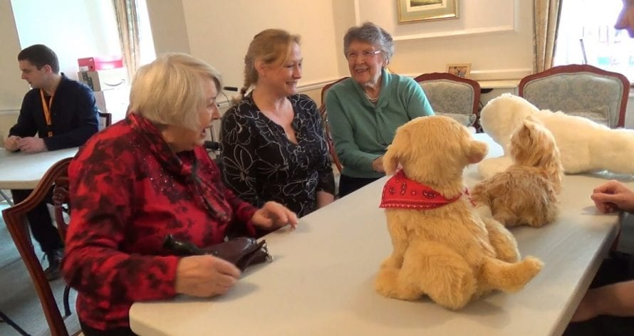 Resident, Anne Hendry; Development Manager, Deborah Hubbard; resident, Madge Jones interacting with the animal companion robots